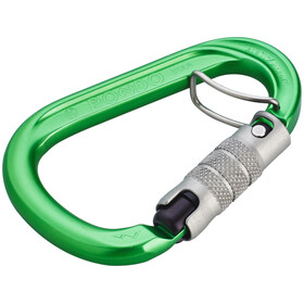 AustriAlpin HMS Rondo 3-Way Autolock Carabiner with Selfie green anodized